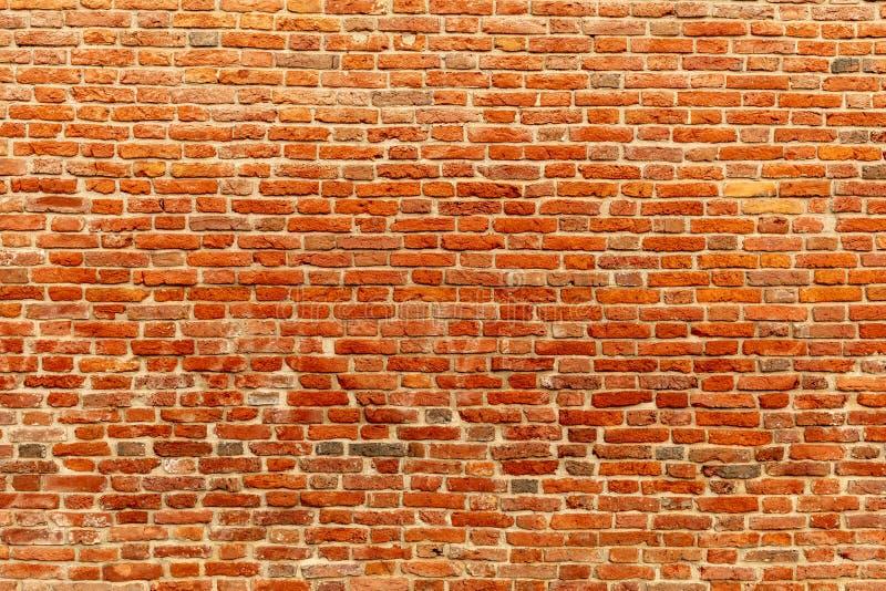 Muro di mattoni rosso immagini stock libere da diritti
