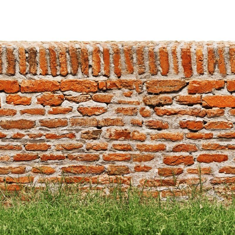 Muro di mattoni rosso con erba verde isolata su bianco fotografie stock