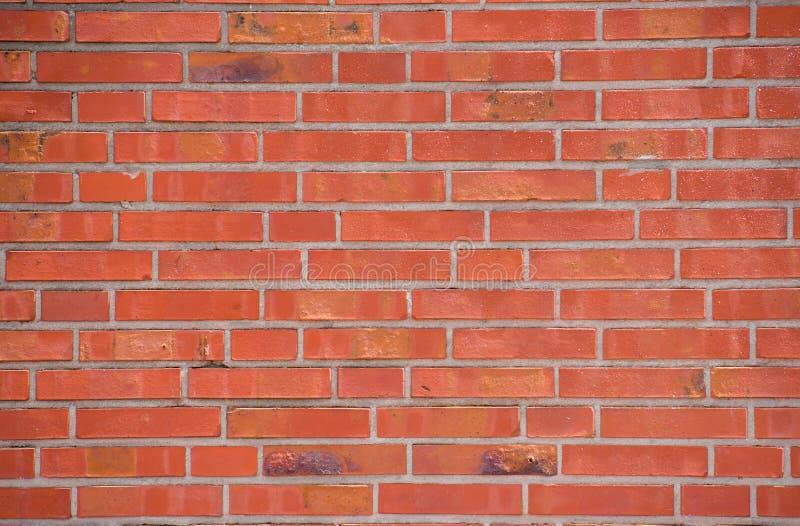Muro di mattoni rosso Fondo rosso fotografia stock