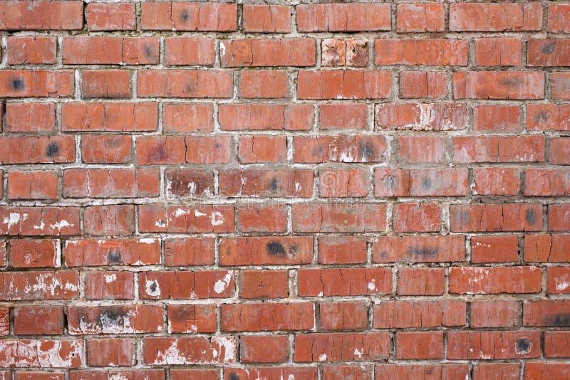 Muro di mattoni, vecchia struttura dei blocchi di pietra rossi Fondo immagini stock libere da diritti