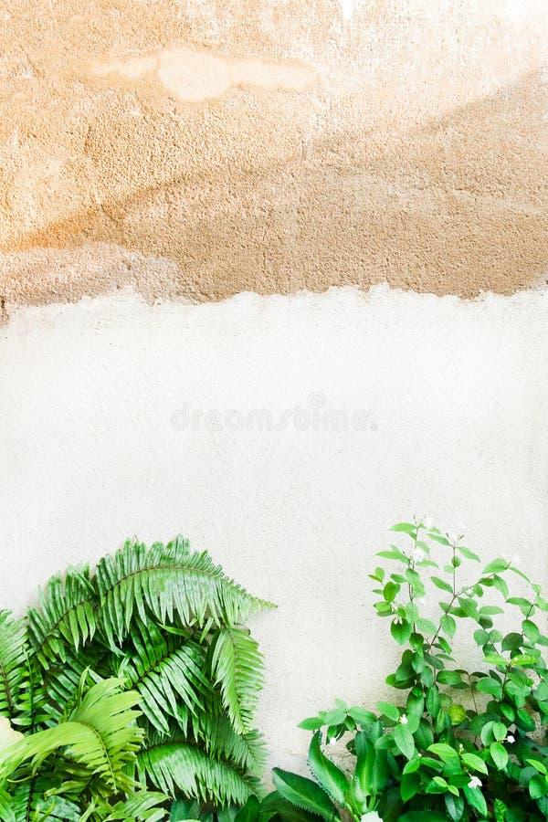 Muro di mattoni vecchio di struttura, fondo fotografia stock libera da diritti