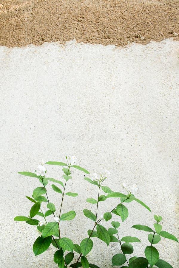 Muro di mattoni vecchio di struttura, fondo fotografie stock