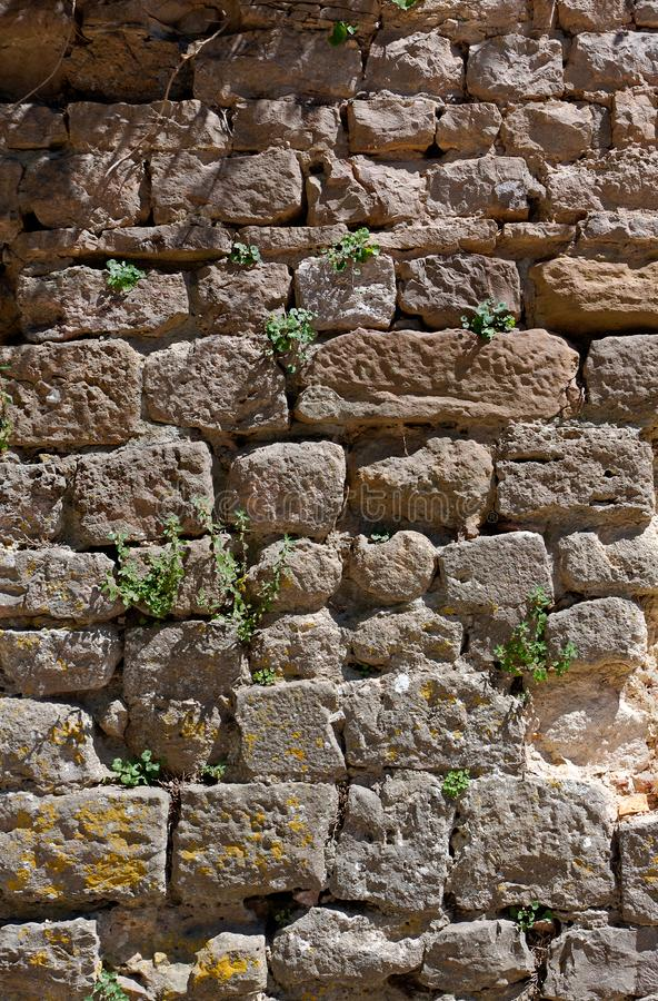 Muro natural de textura de Sand Stone imagem de stock royalty free
