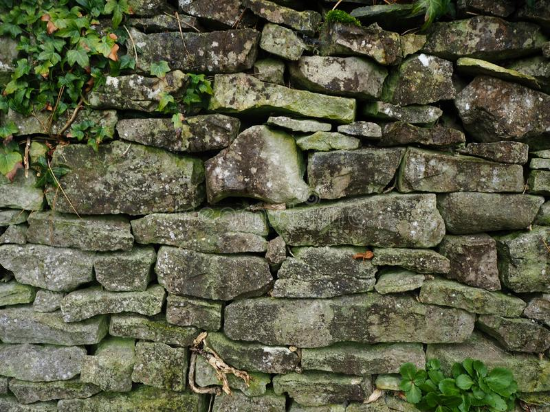 Muro a secco con muschio e l'edera fotografie stock libere da diritti