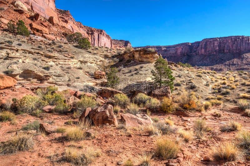 Murphy slingaCanyonlands NP ö i himlen Utah arkivfoton
