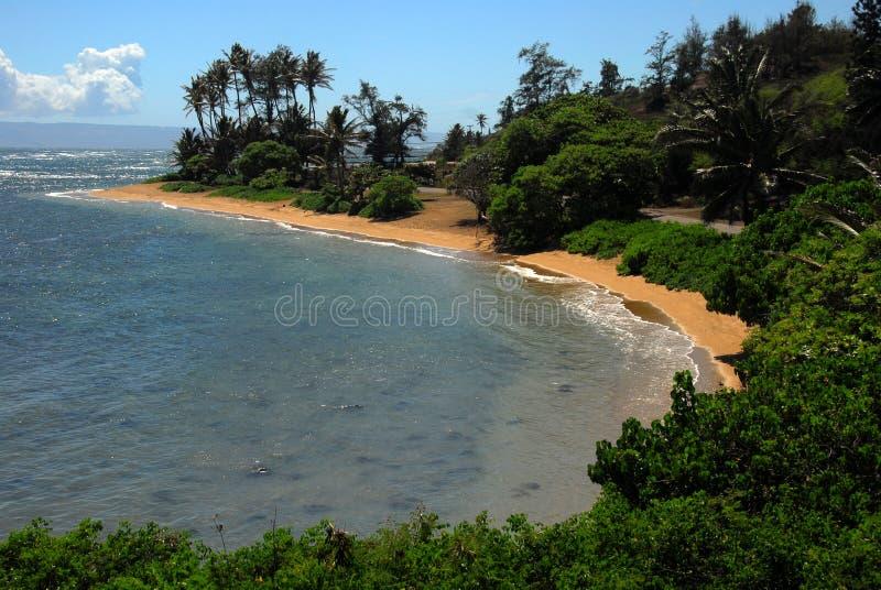 murphys Гавайских островов molokai пляжа стоковая фотография