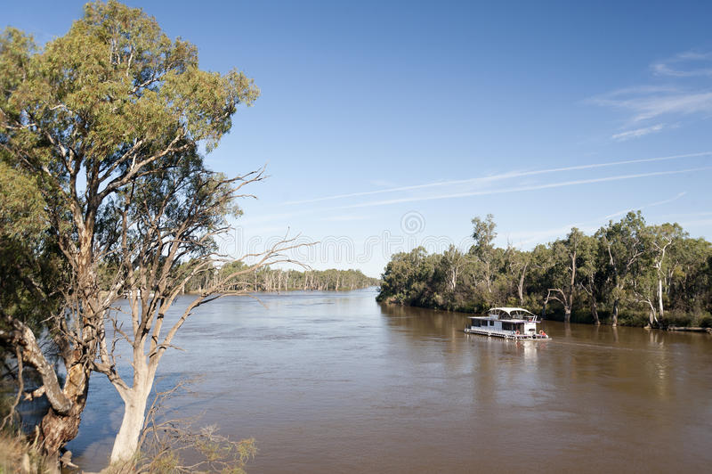 Murray river in flood. Paddle boats on the Murray river at Mildura, Australia after recent heavy rains and flooding in early 2011 stock photos
