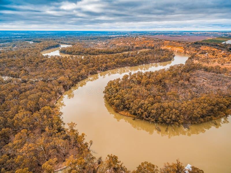 Murray River krökningar i Riverland royaltyfri fotografi