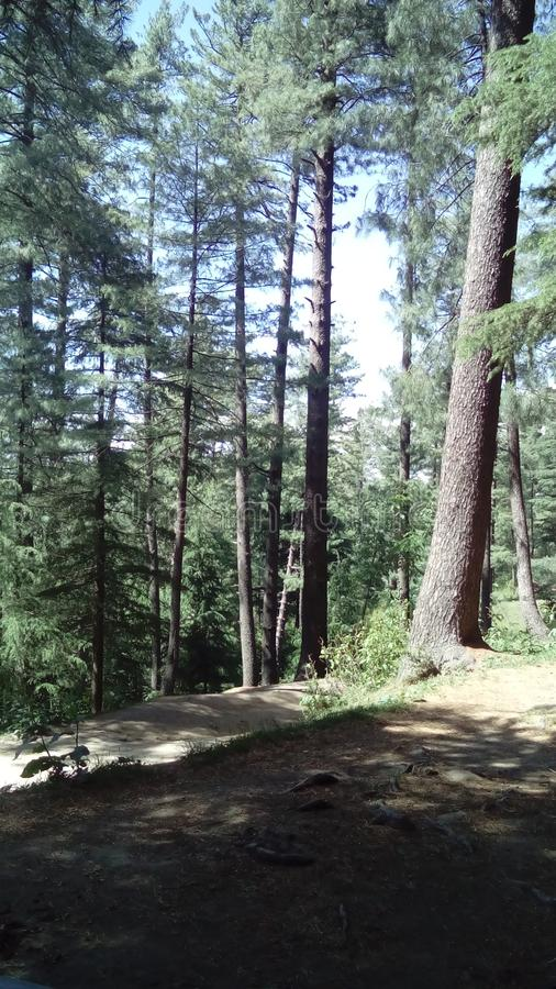 Murree images stock
