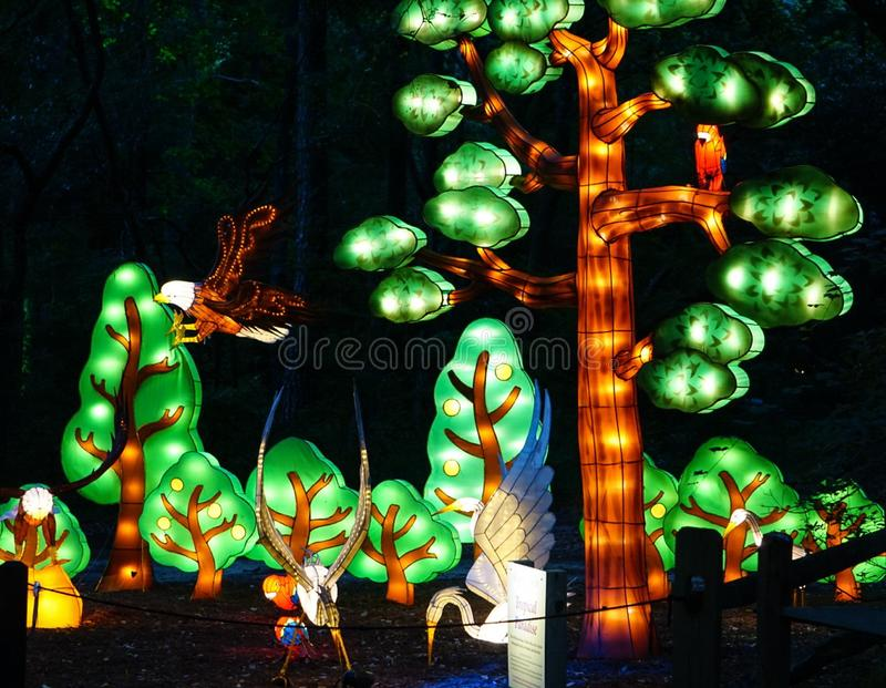 MURRELLS INLET, SOUTH CAROLINA, USA; JULY 4, 2018; The Festival of Lights at Brookgreen Gardens in Murrells Inlet, South Carolina. MURRELLS INLET, SOUTH CAROLINA royalty free stock photo