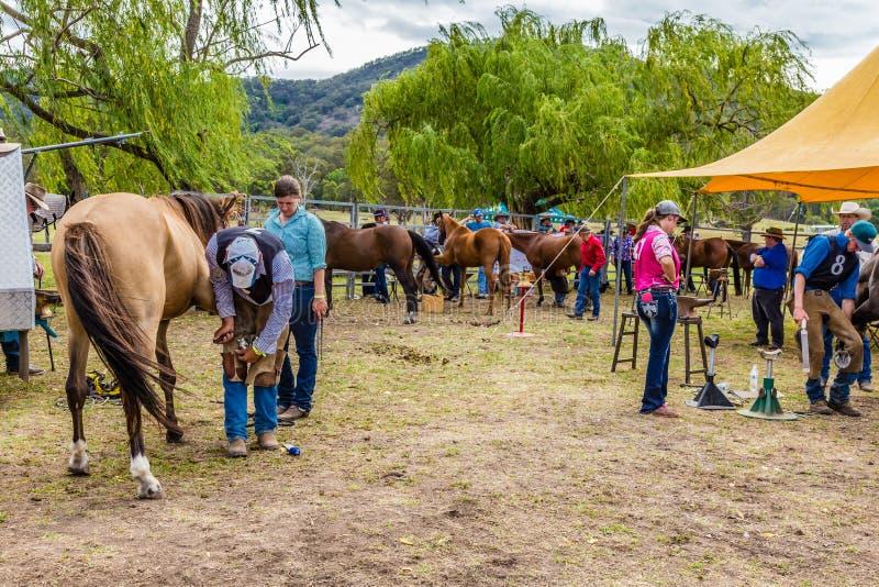 Murrurundi, NSW, Austrália, 2018, o 24 de fevereiro: Concorrentes no rei do cavalo das escalas que calça a competição imagens de stock