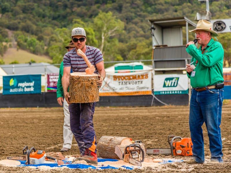 Murrurundi, NSW, Austrália, 2018, o 24 de fevereiro: Demonstração da arte da serra de cadeia foto de stock royalty free
