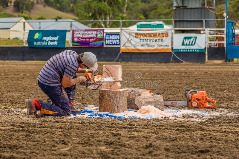 Murrurundi, NSW, Austrália, 2018, o 24 de fevereiro: Demonstração da arte da serra de cadeia fotografia de stock
