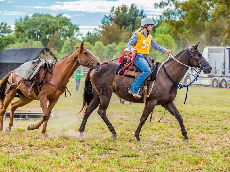 Murrurundi, NSW, Australien, 2018, am 24. Februar: Konkurrent im König der Herausforderung des Strecken-Viehzüchters stockbilder