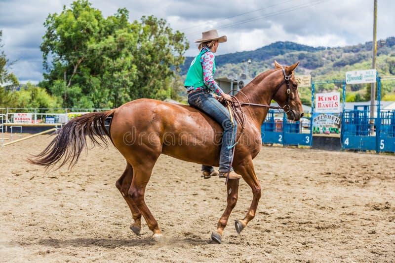 Murrurundi, NSW, Australien, am 24. Februar 2018: Konkurrent im König des Strecken-ungesattelten Freistil-Wettbewerbs stockfotografie
