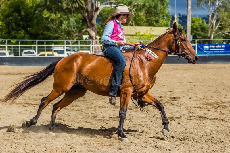 Murrurundi, NSW, Australien, am 24. Februar 2018: Konkurrent im König des Strecken-ungesattelten Freistil-Wettbewerbs lizenzfreie stockfotografie