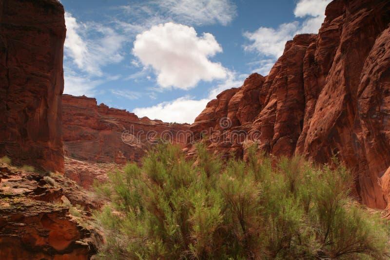 Murs de gorge de désert image stock
