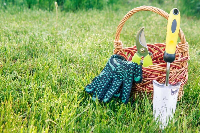 Murslev, pruner och handskar f?r liten hand tr?dg?rds- med den vide- korgen i gr?nt gr?s royaltyfri bild