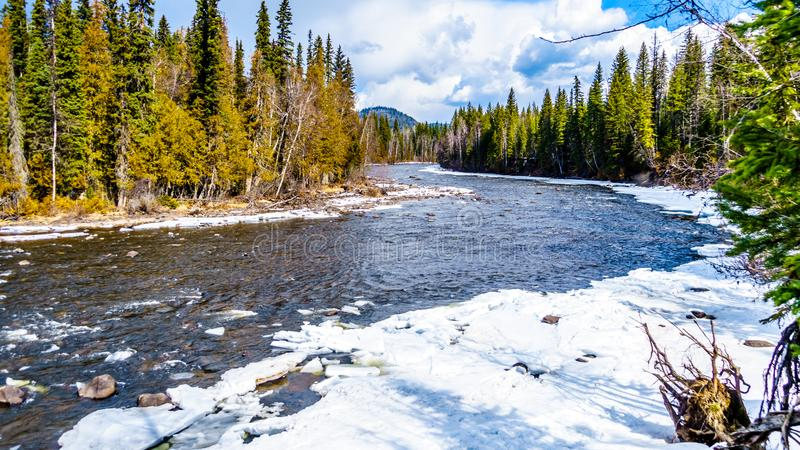 Murtle flod i vintertid i British Columbia, Kanada royaltyfria bilder