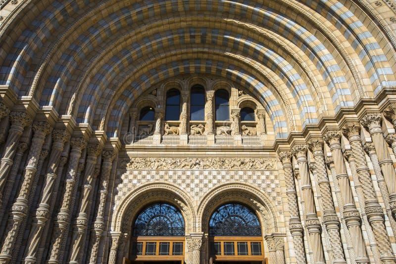 Musée d'histoire naturelle à Londres photographie stock libre de droits