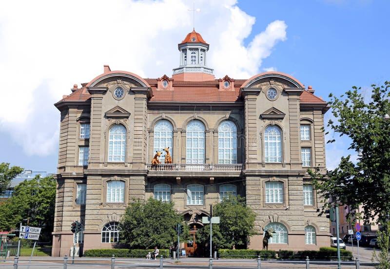 Musée de la zoologie à Helsinki photographie stock libre de droits