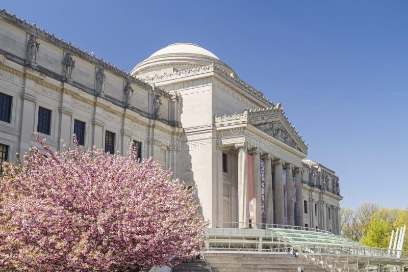 Musée et Cherry Trees de Brooklyn photographie stock