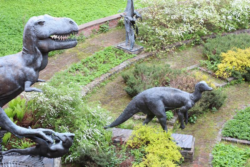Mus?e pal?ontologique Cr?nes et squelettes des dinosaures image stock