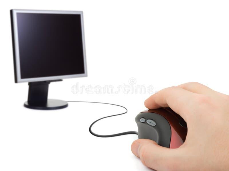 mus för datorhandbildskärm royaltyfri fotografi