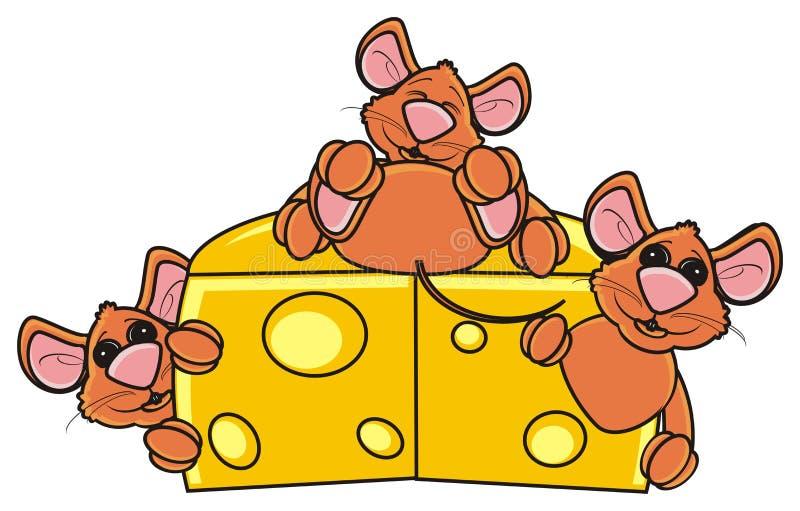 Mus som tre kikar ut ur ett stycke av ost vektor illustrationer