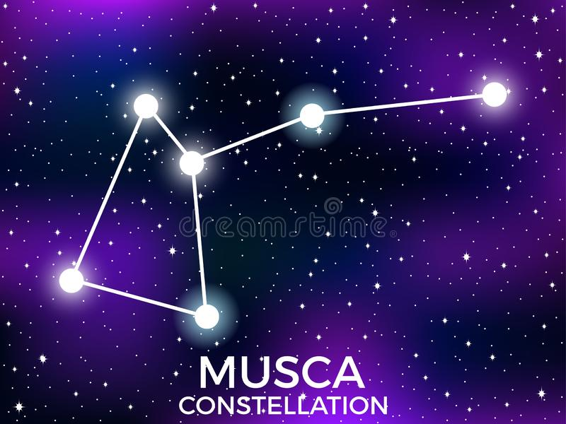 Musca constellation. Starry night sky. Cluster of stars and galaxies. Deep space. Vector. Illustration royalty free illustration