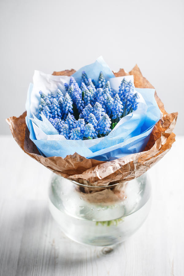 Muscari flower composition in glass vases. White table royalty free stock photography