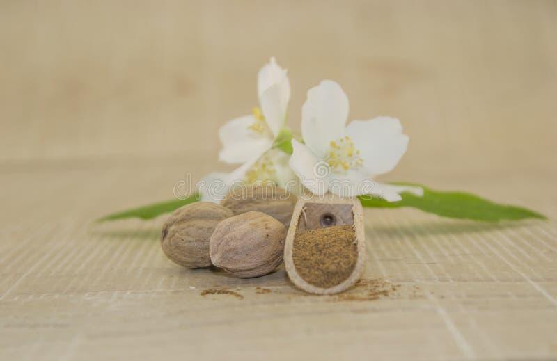 Muscateldruifokkernoot en witte bloem royalty-vrije stock afbeelding