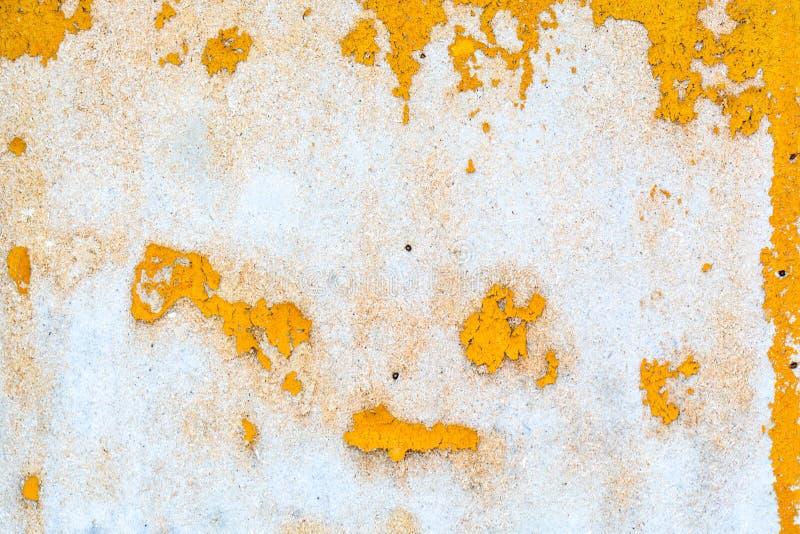 Muschio su un muro di mattoni Muro di mattoni rosso antico con muschio come fondo La struttura di vecchia parete ha coperto il mu fotografia stock