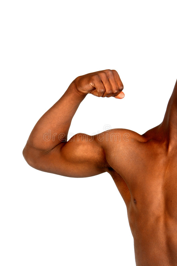 Muscle photos stock