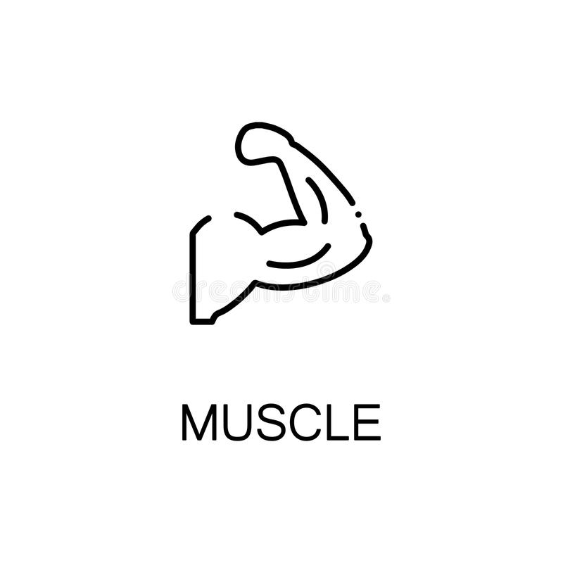 Muscle flat icon. Single high quality outline symbol of human body for web design or mobile app. Thin line signs of muscle for design logo, visit card, etc royalty free illustration