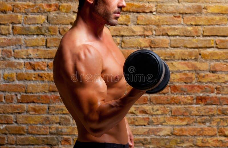 Muscle geformten Karosserienmann mit Gewichten auf Backsteinmauer lizenzfreie stockfotografie
