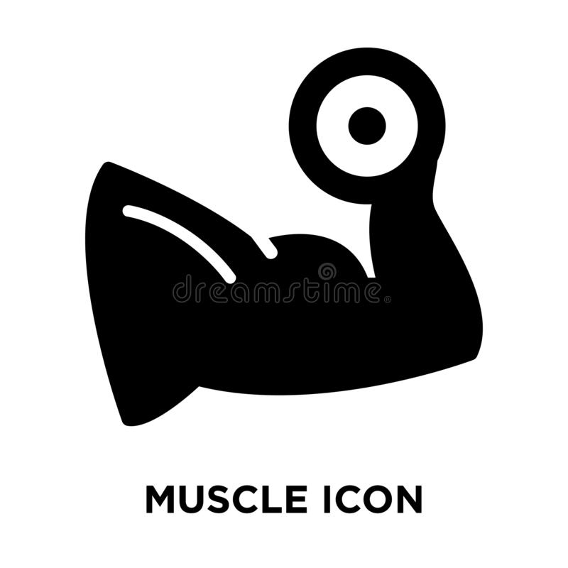 Muscle icon vector isolated on white background, logo concept of vector illustration