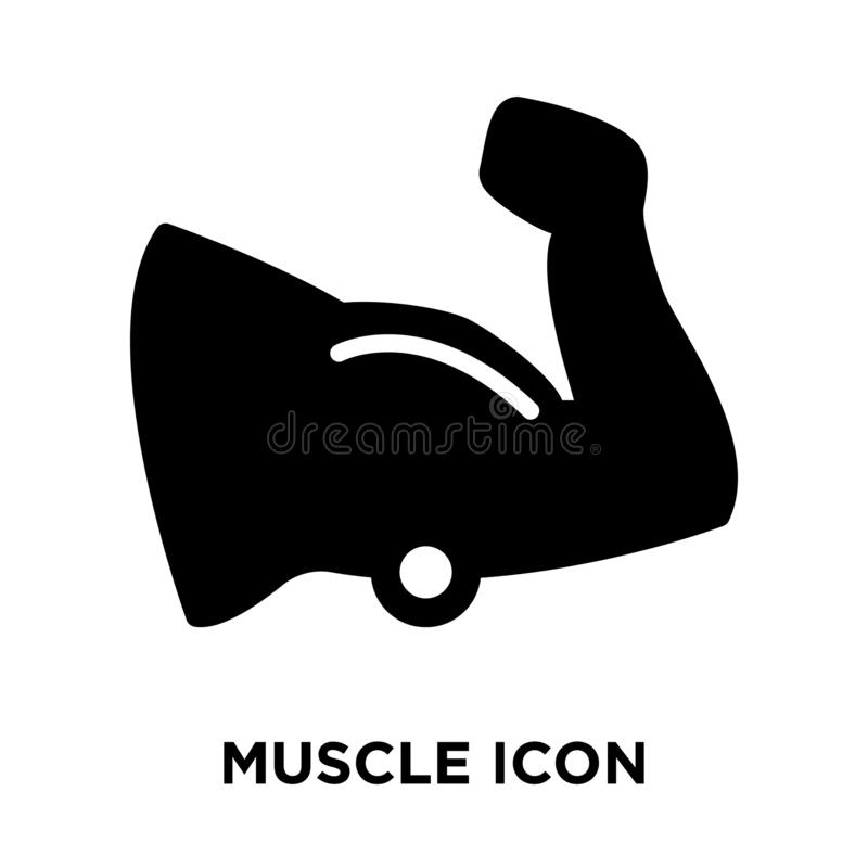 Muscle icon vector isolated on white background, logo concept of royalty free illustration