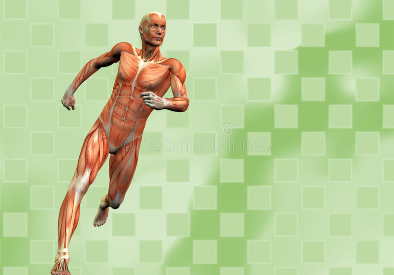 Muscle man background royalty free illustration