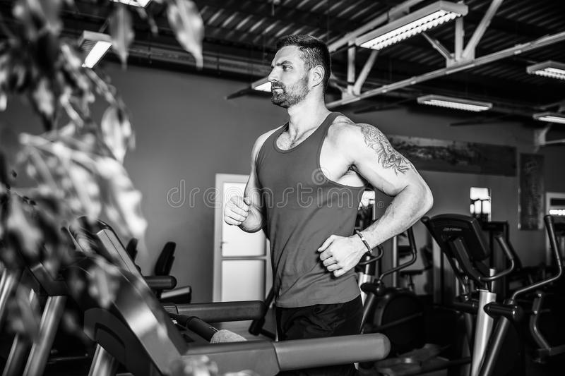 Muscle man running on treadmill. Fit Muscle Man Running on Treadmill in Gym royalty free stock photos