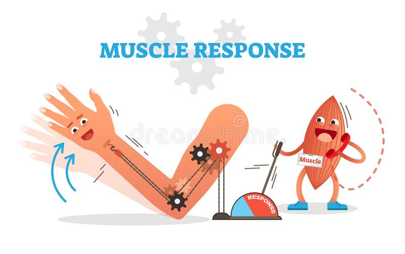 Muscle response conceptual vector illustration scheme with cartoon muscle character receiving nerve impulse and moving hand. stock illustration