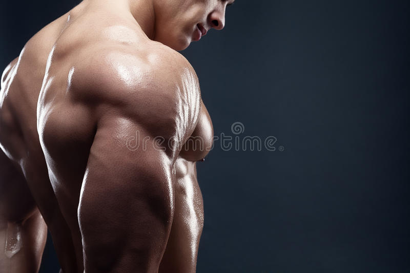 Muscled male model showing his back stock images