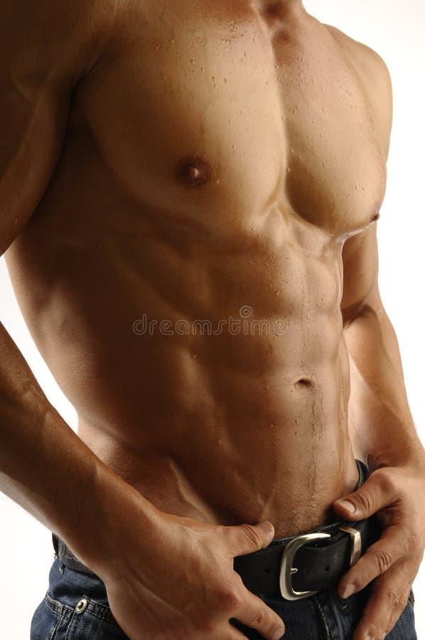 Muscleman imagens de stock
