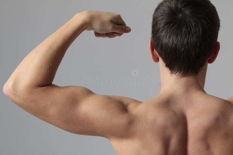 Download Muscles stock photo. Image of attractive, sport, hand - 11855350