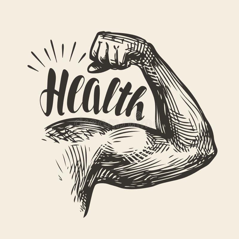 Muscles de bras fort, biceps Gymnase, croquis de santé de bodybuilding Lettrage, illustration de vecteur illustration de vecteur
