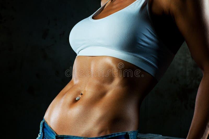 Muscoli addominali fotografia stock