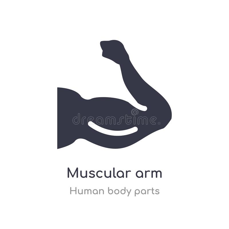 Muscular arm outline icon. isolated line vector illustration from human body parts collection. editable thin stroke muscular arm. Icon on white background royalty free illustration