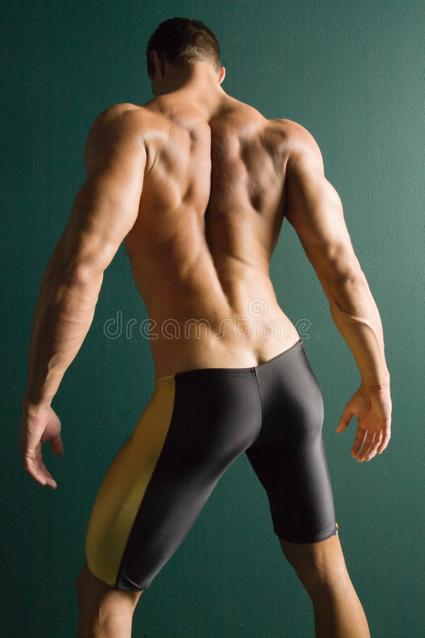 Download Muscular Athletic Body Builder Back Stock Photo - Image: 1884594