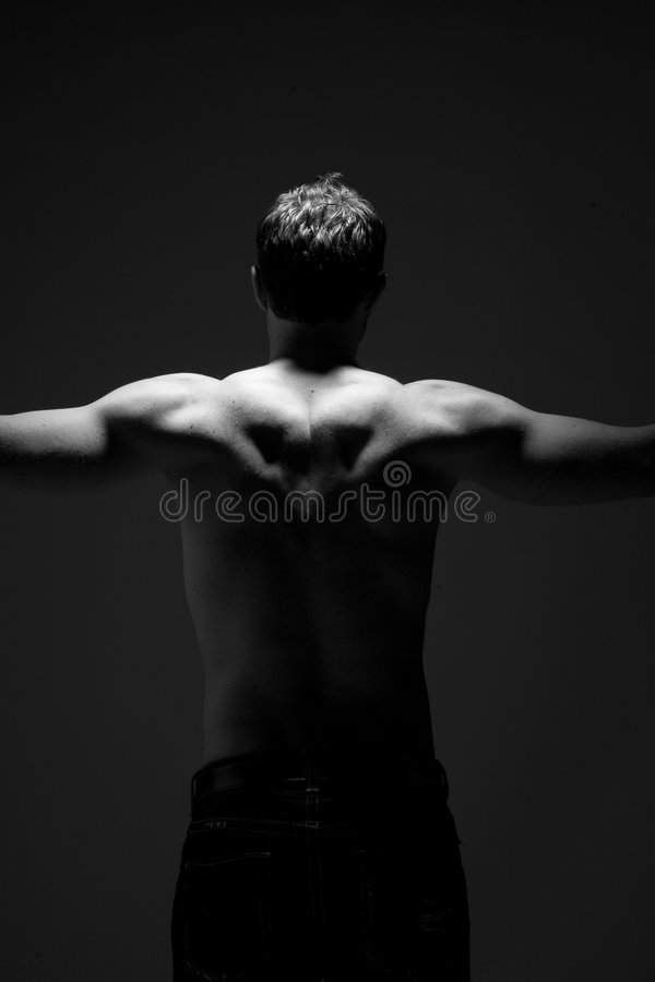 Download Muscular back stock image. Image of athletic, intimate - 6733641