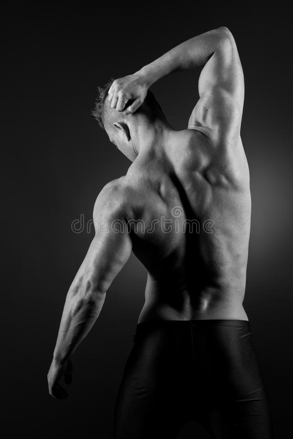 Download Muscular back stock photo. Image of attractive, exercising - 38718172